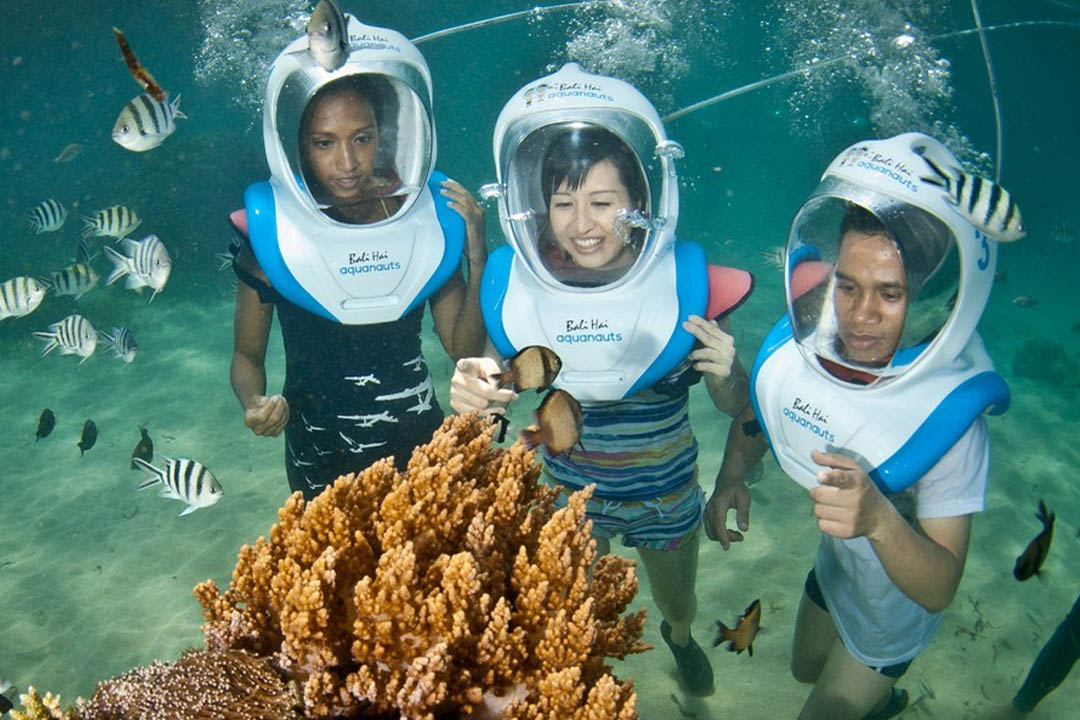 Experience the underwater aquanauts - equipments and instructions are provided